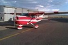 Aircraft for Sale in New Mexico, United States: 1981 Cessna 172P