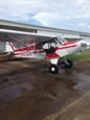 Aircraft for Sale in Texas, United States: 1950 Piper PA-18 Super Cub