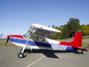 Aircraft for Sale in California, United States: 1957 Cessna 180A Skywagon