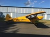 Aircraft for Sale in New Jersey, United States: 2008 Cub Crafters Inc. CC11-100 Sport Cub