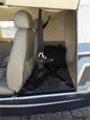 2003 Piper PA-32-301XTC 6XT for Sale in Michigan, United States