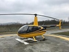 Aircraft for Sale in Italy: 2006 Robinson R-44 Raven