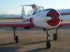 Aircraft for Sale in Italy: 1982 Yakovlev YAK-52