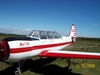 Aircraft for Sale in Sweden: 1982 Yakovlev YAK-52
