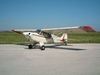Aircraft for Sale in Italy: 1988 Aviat Aircraft Inc. A-1 Husky