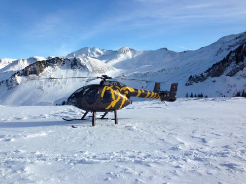 Aircraft for Sale in Switzerland (LSXS): 2000 McDonnell Douglas MD-520N
