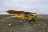 Aircraft for Sale in Canada: 1949 Piper J-3 Cub Special