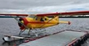 Aircraft for Sale in Canada: 1951 de Havilland DHC-2 Beaver