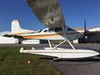 Aircraft for Sale in Canada: 1980 Cessna 185 Skywagon