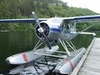 Aircraft for Sale in Canada: 1948 de Havilland DHC-2 Beaver
