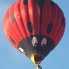Aircraft for Sale in United Kingdom: 2000 Cameron Balloons N-120