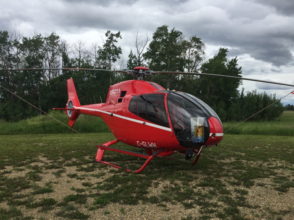 Aircraft for Sale in Canada: 2008 Eurocopter EC 120B - 1