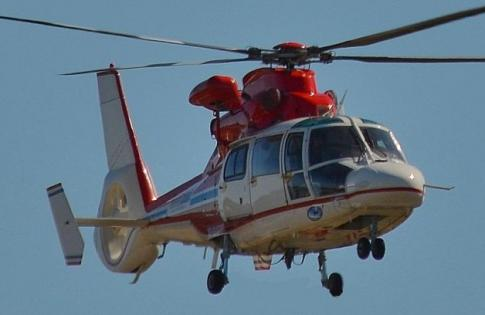 Aircraft for Sale in Australia: 1994 Eurocopter AS 365N2 - 1
