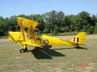 Aircraft for Sale in New Jersey: 1939 de Havilland Tiger Moth - 3