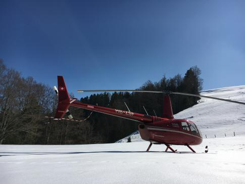 Aircraft for Sale in Switzerland: 2013 Robinson R-66 - 2