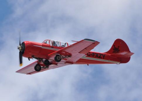 Aircraft for Sale in Ontario: 1983 Yakovlev YAK-52 - 1