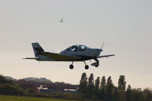 Aircraft for Sale in Italy: 2012 Tecnam P2002-JF - 3