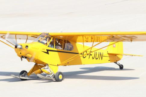 Aircraft for Sale in Ontario: 1946 Piper Cub - 3