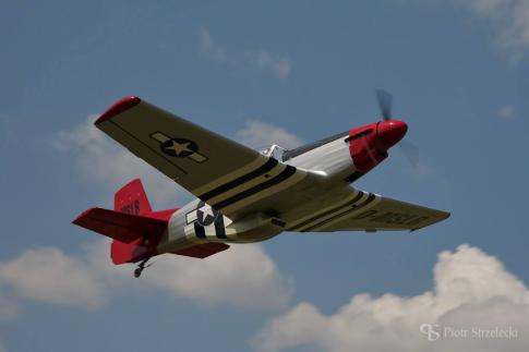 Off Market Aircraft in Germany: 2012 Loehle Mustang - 2