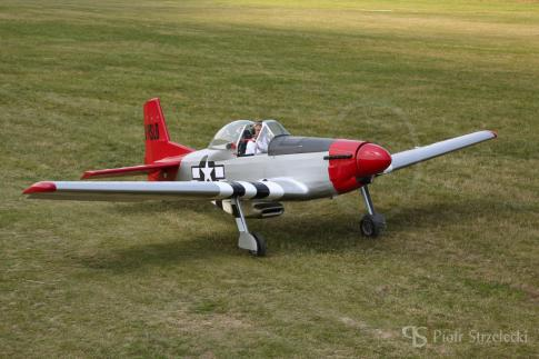 Off Market Aircraft in Germany: 2012 Loehle Mustang - 3