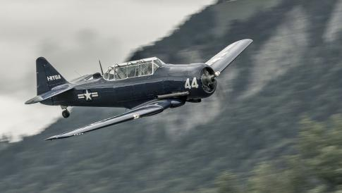 Aircraft for Sale in Italy: 1951 North American T-6 Harvard MK4