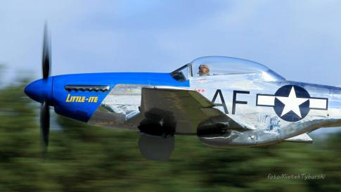 Off Market Aircraft in Germany: 1944 North American TF-51D - 3