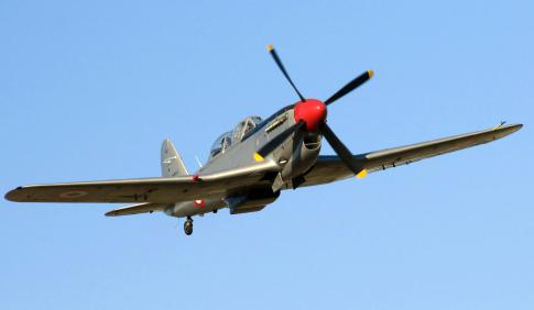 Aircraft for Sale in Italy: 1951 Fiat G.59