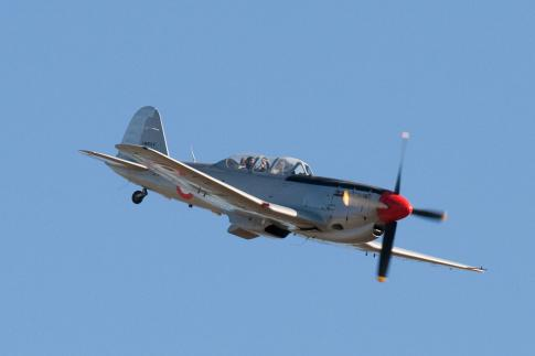 Aircraft for Sale in Italy: 1951 Fiat G.59 - 2